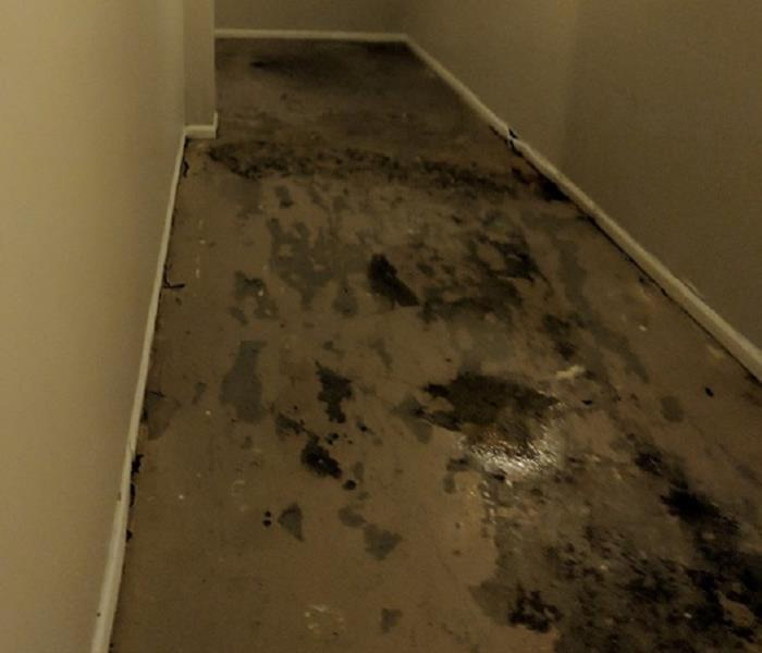 Raw sewage and water in a apartment building