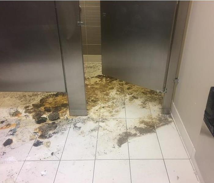 Raw sewage surrounding a bathroom drain in a public restroom.