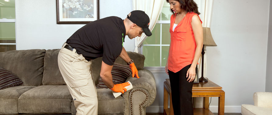 Chicago, IL carpet upholstery cleaning